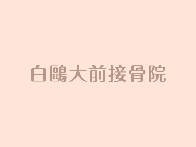 第10回 白鴎管弦楽団 定期演奏会